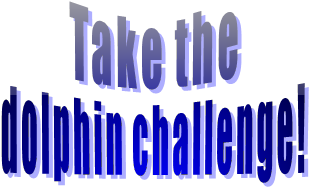 Take the dolphin challenge!